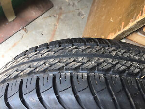 LIKE NEW FOUR TIGER PAW TIRES.