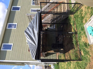 8 x 8 outside dog kennel