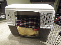 Dogs X Large Double Door Plastic Crate Item #: 157322