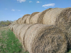 Last of 2016 Hay for Sale