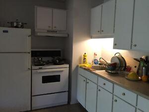 apartment for rent !!! Gatineau Ottawa / Gatineau Area image 2