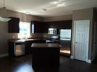 Brand new high end executive 2 bedroom duplex, Bracebridge