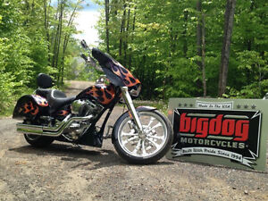 Big dog bull dog bagger 2010
