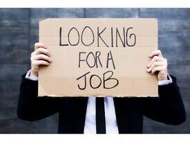 Male 51 seeking employment