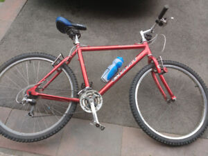 "Used Red Giant Yukon 19.5"" Frame Mountain Bike ...NEEDS A BIT OF"