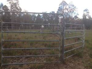 Heavy Duty Cattle Panels and Gates Branxton Singleton Area Preview