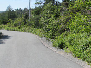 155-161 COUNTRY PATH ROAD - LONG POND, CBS St. John's Newfoundland image 9
