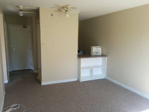 1 bedroom apartment close to the Village Mall