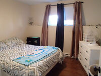 SEPT or OCT: 1 bedroom apt - all included! Pet friendly