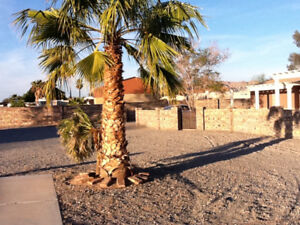 Yuma Foothills RV lot for Rent