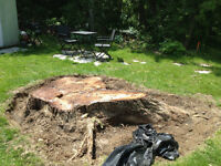 Over the Top Stump Removal