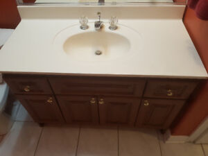 """44"""" Vanity with countertop and faucet."""