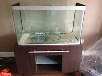 70 Gallons Rimless Aquarium