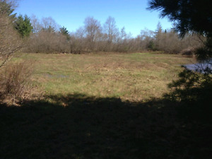 Beautiful river frontage lot Nine Mile River