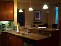 QUALITY SERVICE IN YOUR BUDGET (Bathroom, Kitchen, Basement