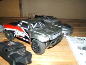 LOSI  1/24  BRUSHLESS MICRO  RALLY  RC