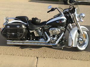 2008 Harley Softail Deluxe