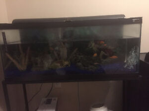 25 GALLON FISH TANK AQUARIUM WITH METAL STAND AND ACCESSORIES