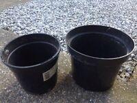 *** Wanted !! *** BIG Plant Pots.