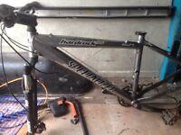 Specialised bike frame