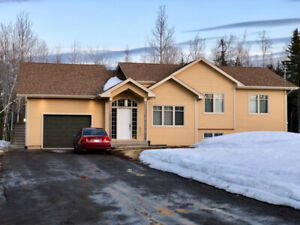2945 ROUTE 115 IRISHTOWN NB for sale by owner