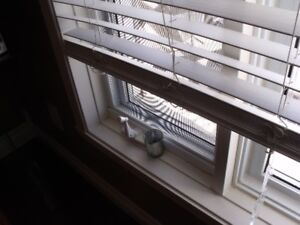 Heavy PVC White 2 in. Faux Wood Horizontal Blinds