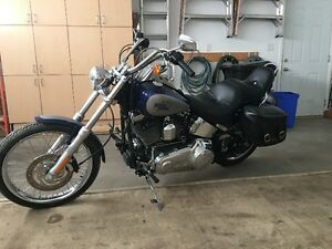FXSTC Softail Custom 3,100 KMS 13,000 OBO!! REDUCED AGAIN!!