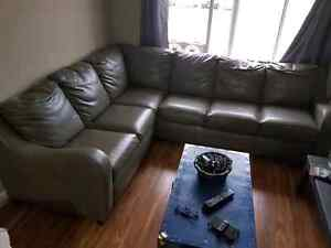 Apartment size Sectional Couch