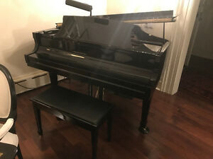 Essex Grand Piano by STEINWAY&SONS