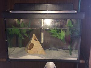 Aquarium ready to go