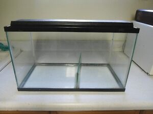 Small Fish Tank with divider