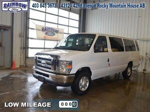 2013 Ford Econoline Cargo Van   - Low Mileage