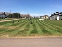 Brothers Property Care, Lawn Care & Landscaping NOW BOOKING