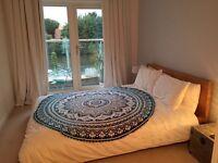 Oak veneer bed frame
