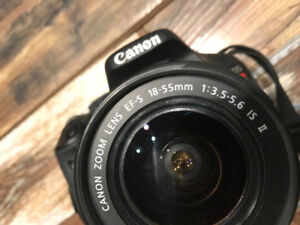CANON REBEL T31 comes with everything (will negotiate)