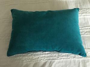 Turquoise accent pillows