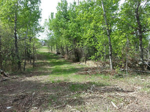 3.71 acre with a mobile home acreage land near Tofield for rent