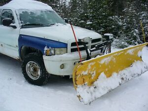 2001 Dodge Ram 1500 4X4 sport With 7 1/2' Meyer Diamond Plow