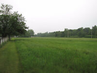 Very Nice 2 Acre Lot for Sale in Good Location