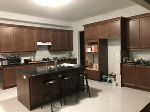 Existing kitchen maple cabinets & granite countertop for sale
