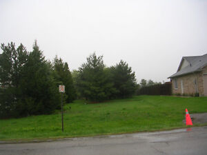 FARM PROPERTY WITH BUILDING LOT