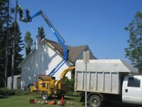 Tree Removal.. The #1 Reason For Hiring Us.. Is Our Tracked Llft