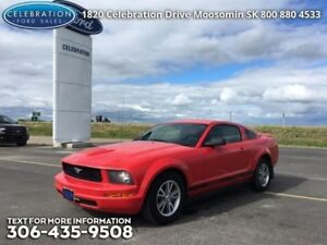 2005 Ford Mustang   LOW KMS!!!