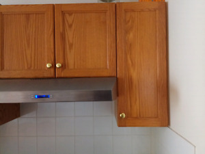 """12"""" wall cabinet"""
