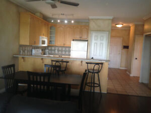 Free Rent in June  For Executive Style downtown Condo