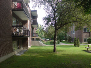1 bdrm (util incl) centrally located for early December