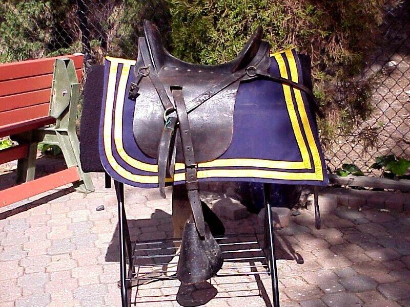 Original INDIAN WARS U.S. Cavalry Officer