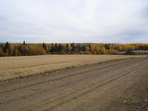 Land 2.5hrs south of Fort mcMurray