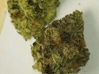 420 sesh group