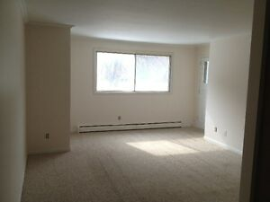 Well Maintained One Bedroom Apartment, Utilities Included